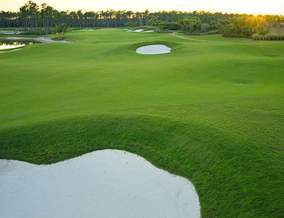 fort myers golf courses plantation golf country club